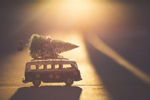 Christmas tree tied to a camper van