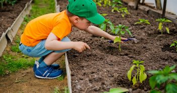 image of a young boy gardening