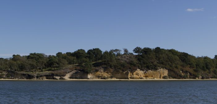 LOCAL NEWS: High value items stolen from Brownsea Island