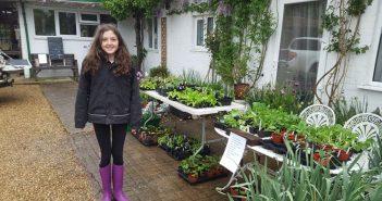 Three Local Children Help Raise Funds For Dorset Heavy Horse Centre