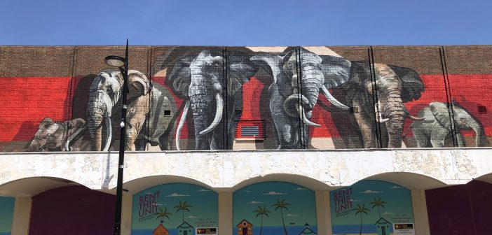 LOCAL NEWS: Elephants make a return to Boscombe for BEAF